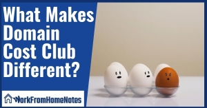 What Makes Domain Cost Club Different?